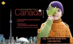 Apply for Permanent Residency with Employment