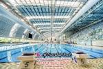 Swimming pool motors & Maintenance work